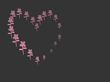 valentine heart free screensaver